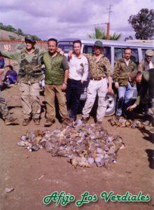 Podenco Andaluz Caza 005
