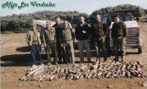 Podenco Andaluz Caza 026